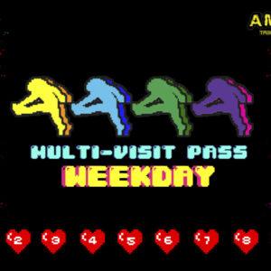 Multi-Visit Passes (MVP)